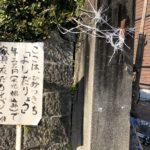 京都大学の文化祭