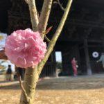 広島市の再休校