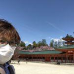 「京都新城」の発見